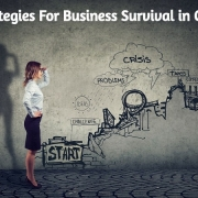 Strategies For Business Survival in Crisis: Business Guides